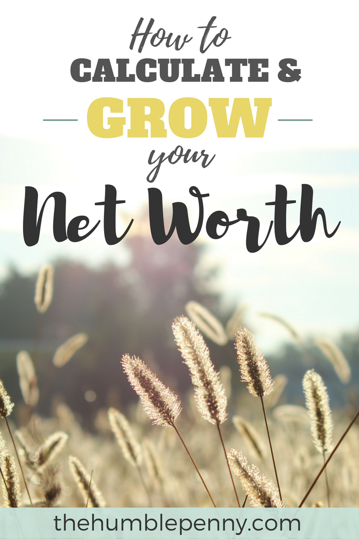 How to Easily Calculate and Grow Your Net Worth Today