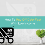 How To PAY OFF DEBT FAST With Low Income!